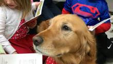 PHOTO COURTESY OF ROXY READING / Rpxy Reading began in 2005 when founder Diane Smith brought her dog Roxy to classrooms in Gaiman Elementary School (above). This month, it celebrated five years of bringing dogs to Dependency Court.